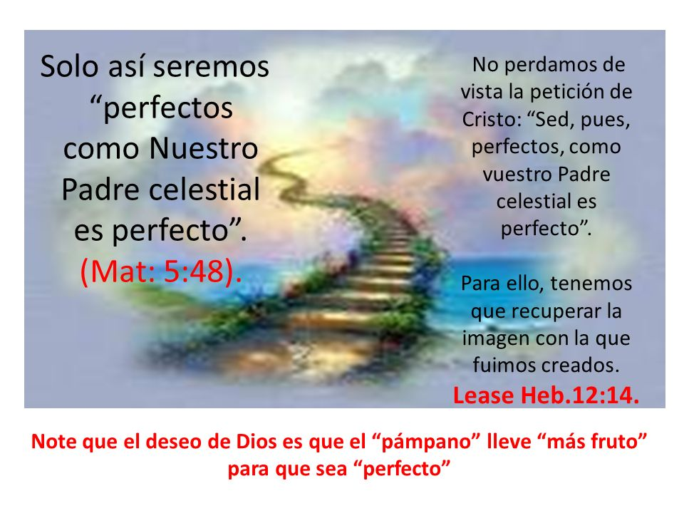 Solo así seremos perfectos como Nuestro Padre celestial es perfecto