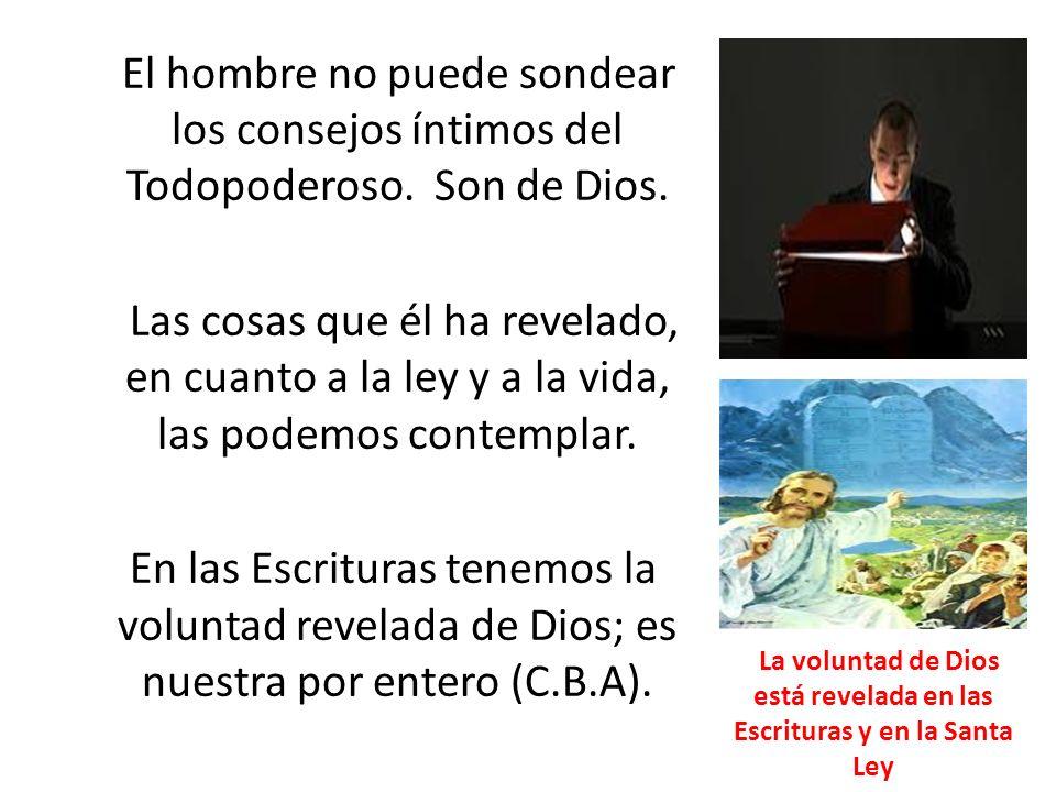 La voluntad de Dios está revelada en las Escrituras y en la Santa Ley
