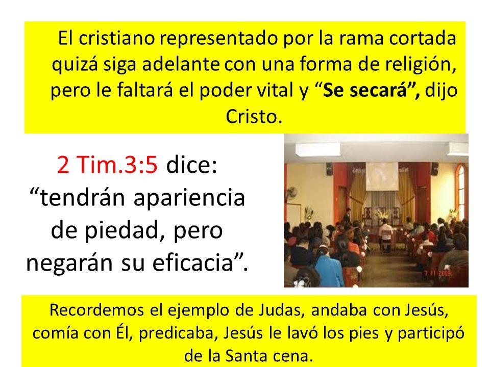 El cristiano representado por la rama cortada quizá siga adelante con una forma de religión, pero le faltará el poder vital y Se secará , dijo Cristo.