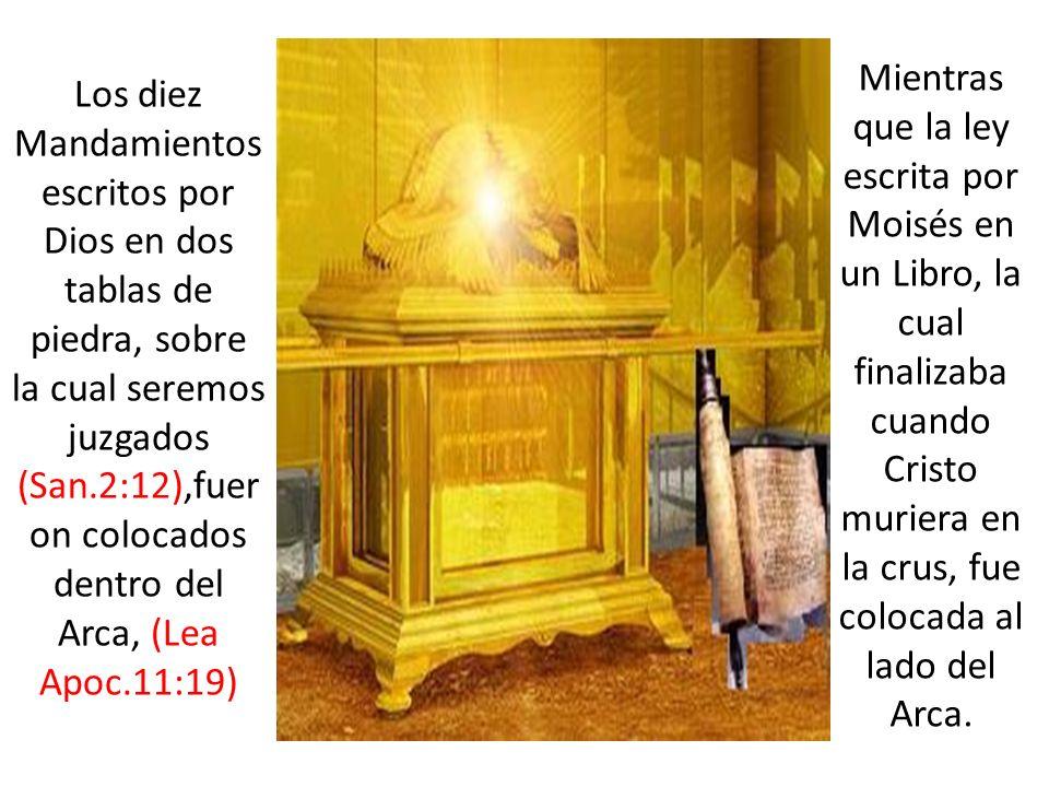 Mientras que la ley escrita por Moisés en un Libro, la cual finalizaba cuando Cristo muriera en la crus, fue colocada al lado del Arca.