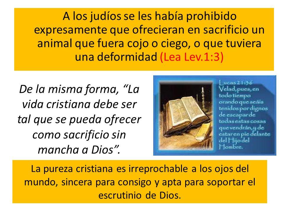 A los judíos se les había prohibido expresamente que ofrecieran en sacrificio un animal que fuera cojo o ciego, o que tuviera una deformidad (Lea Lev.1:3)