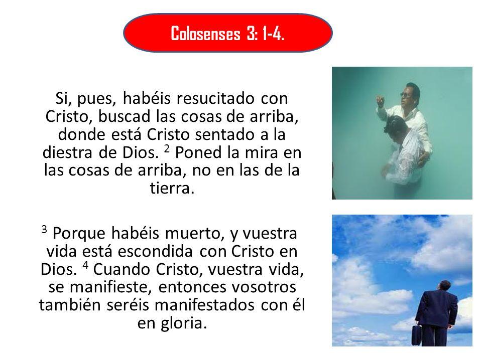 Colosenses 3: 1-4.