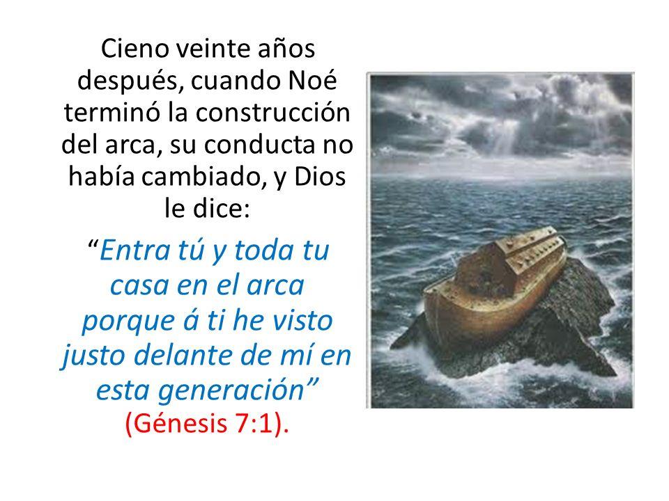 Cieno veinte años después, cuando Noé terminó la construcción del arca, su conducta no había cambiado, y Dios le dice: Entra tú y toda tu casa en el arca porque á ti he visto justo delante de mí en esta generación (Génesis 7:1).