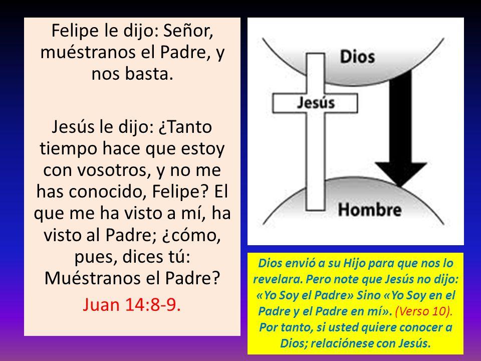 Felipe le dijo: Señor, muéstranos el Padre, y nos basta