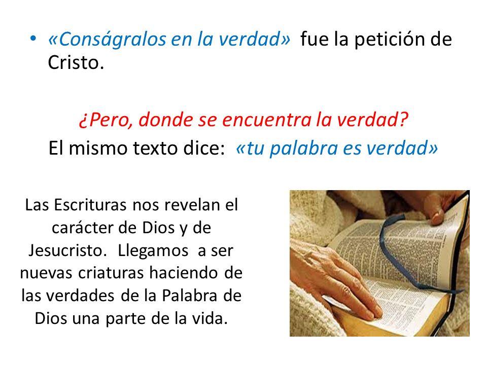 «Conságralos en la verdad» fue la petición de Cristo.