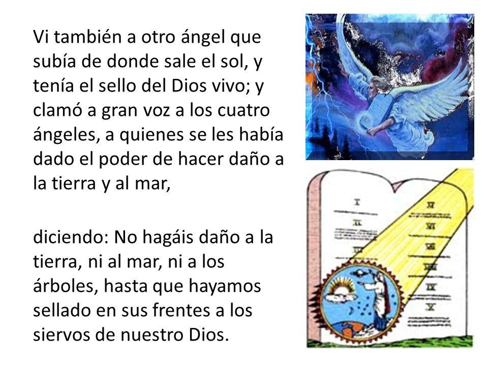 Vi también a otro ángel que subía de donde sale el sol, y tenía el sello del Dios vivo; y clamó a gran voz a los cuatro ángeles, a quienes se les había dado el poder de hacer daño a la tierra y al mar, diciendo: No hagáis daño a la tierra, ni al mar, ni a los árboles, hasta que hayamos sellado en sus frentes a los siervos de nuestro Dios.