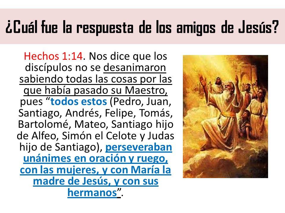 ¿Cuál fue la respuesta de los amigos de Jesús