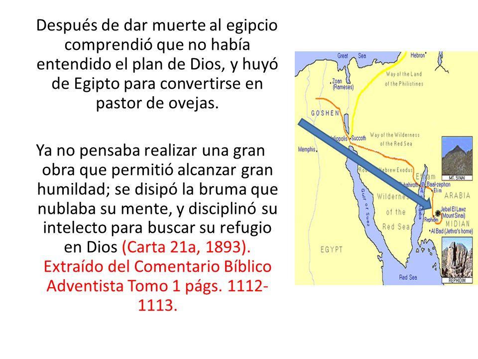 Después de dar muerte al egipcio comprendió que no había entendido el plan de Dios, y huyó de Egipto para convertirse en pastor de ovejas.