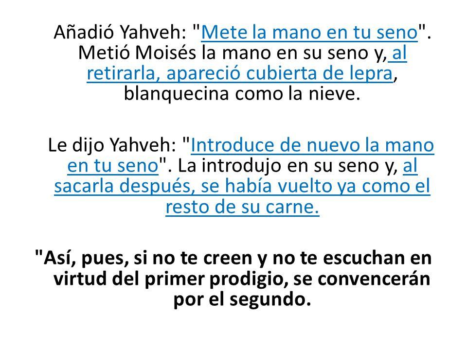 Añadió Yahveh: Mete la mano en tu seno