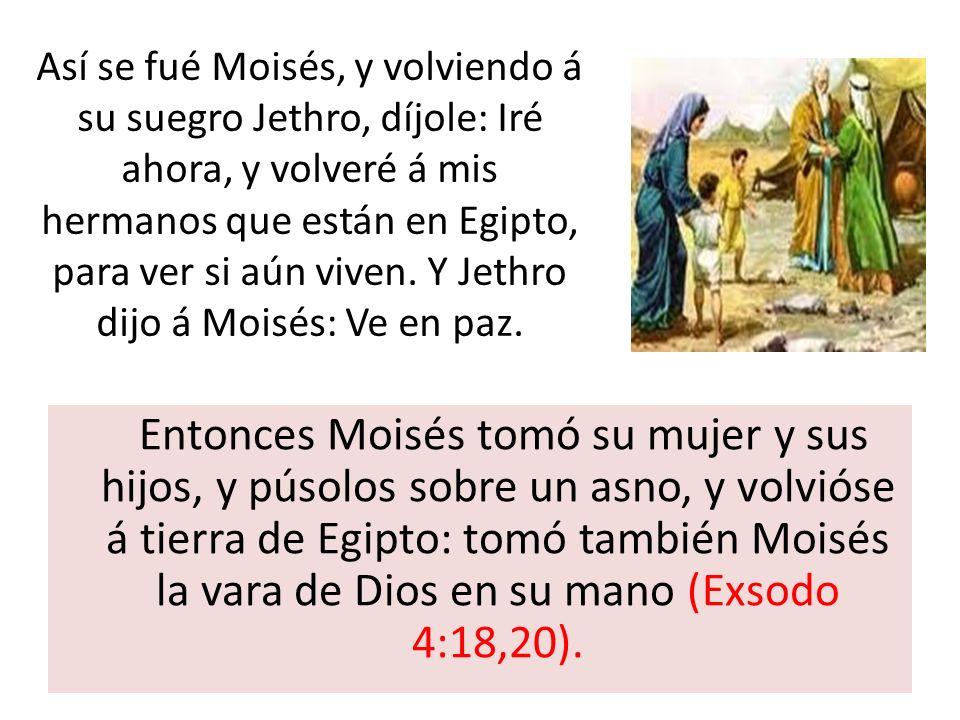 Así se fué Moisés, y volviendo á su suegro Jethro, díjole: Iré ahora, y volveré á mis hermanos que están en Egipto, para ver si aún viven. Y Jethro dijo á Moisés: Ve en paz.