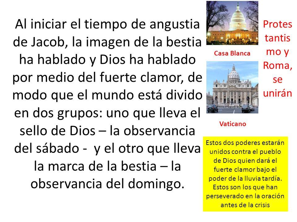 Protestantismo y Roma, se unirán