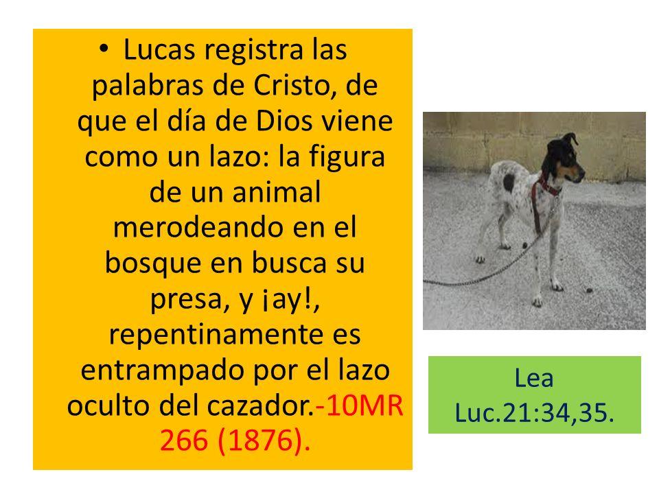 Lucas registra las palabras de Cristo, de que el día de Dios viene como un lazo: la figura de un animal merodeando en el bosque en busca su presa, y ¡ay!, repentinamente es entrampado por el lazo oculto del cazador.-10MR 266 (1876).