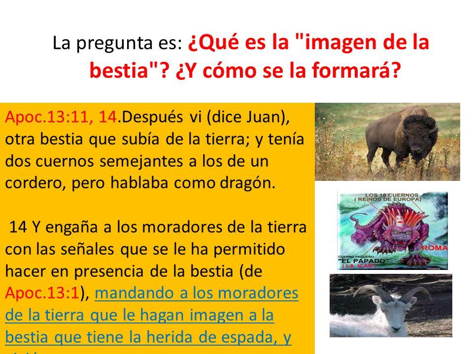 La pregunta es: ¿Qué es la imagen de la bestia ¿Y cómo se la formará