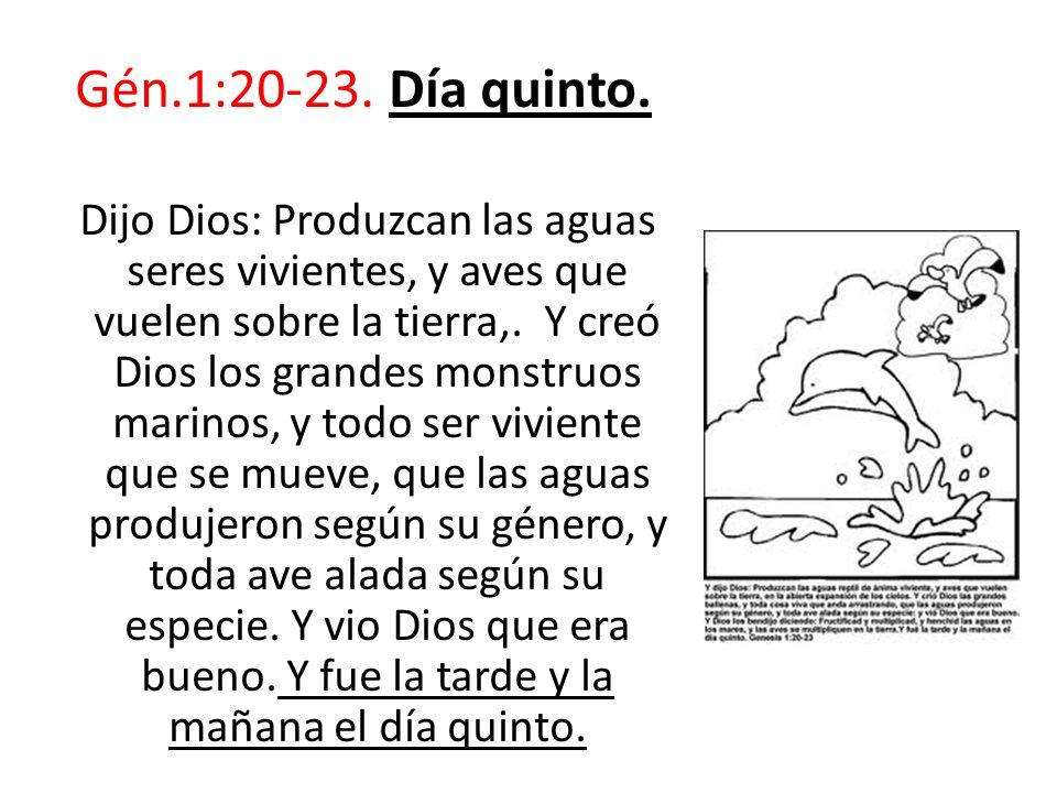 Gén.1:20-23. Día quinto.