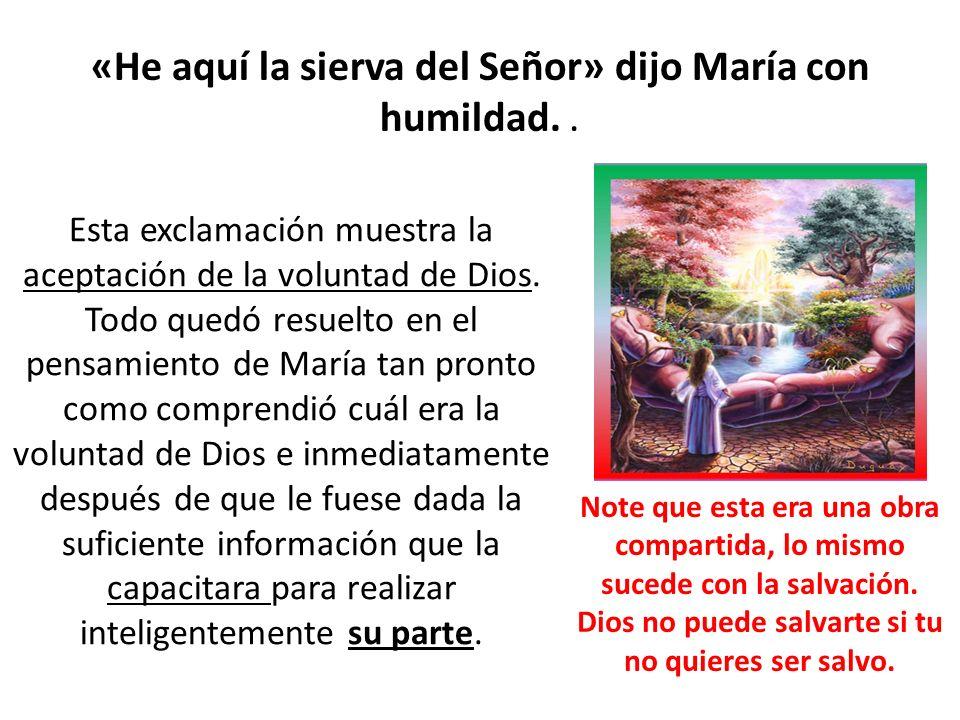 «He aquí la sierva del Señor» dijo María con humildad. .