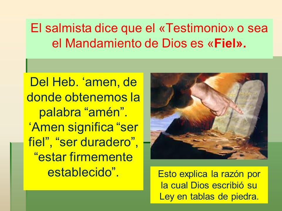 El salmista dice que el «Testimonio» o sea el Mandamiento de Dios es «Fiel».