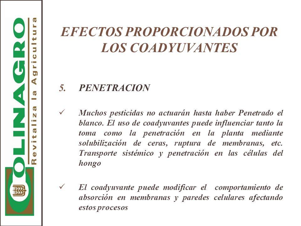 EFECTOS PROPORCIONADOS POR LOS COADYUVANTES