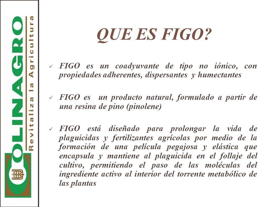 QUE ES FIGO FIGO es un coadyuvante de tipo no iónico, con propiedades adherentes, dispersantes y humectantes.