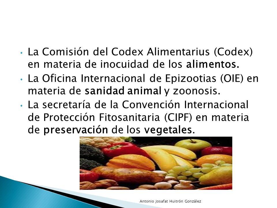 La Comisión del Codex Alimentarius (Codex) en materia de inocuidad de los alimentos.