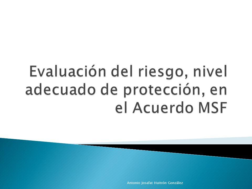 Evaluación del riesgo, nivel adecuado de protección, en el Acuerdo MSF
