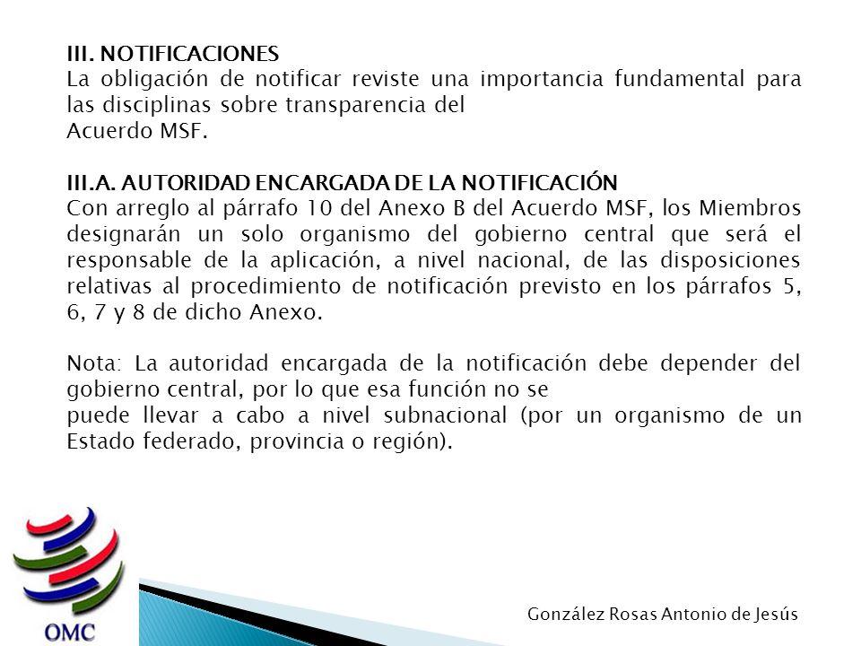 III.A. AUTORIDAD ENCARGADA DE LA NOTIFICACIÓN