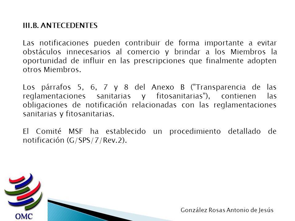 III.B. ANTECEDENTES