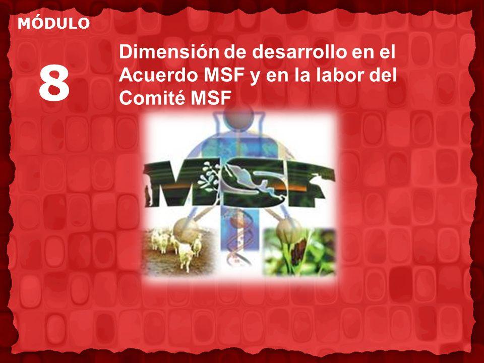 Dimensión de desarrollo en el Acuerdo MSF y en la labor del Comité MSF