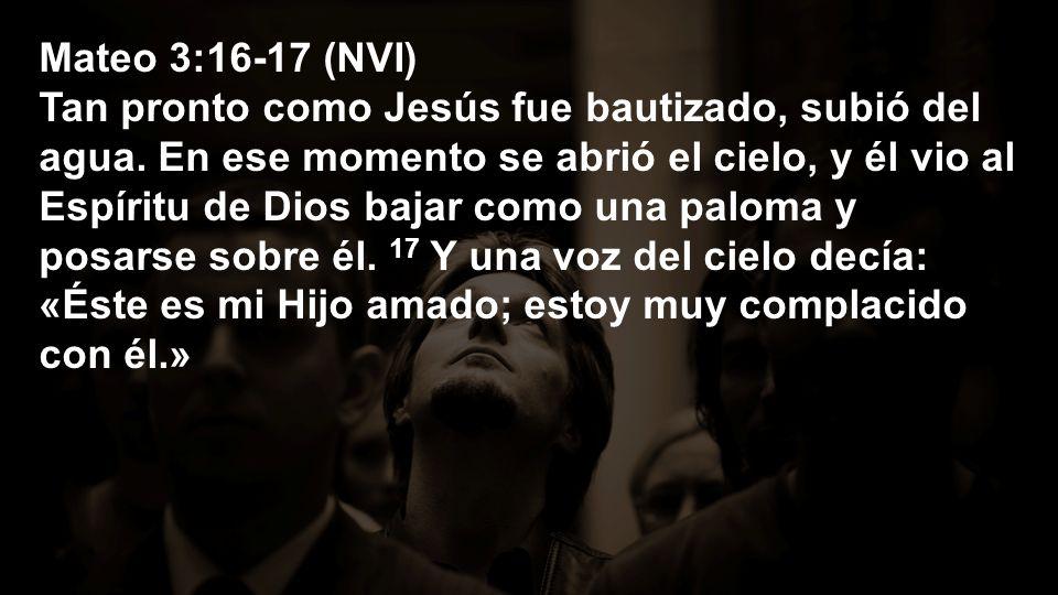 Mateo 3:16-17 (NVI)