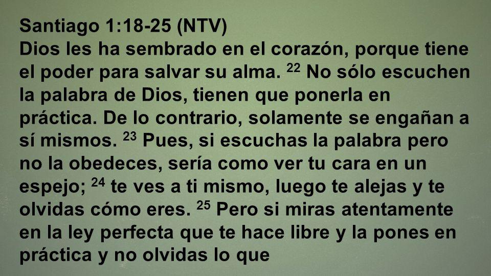 Santiago 1:18-25 (NTV)