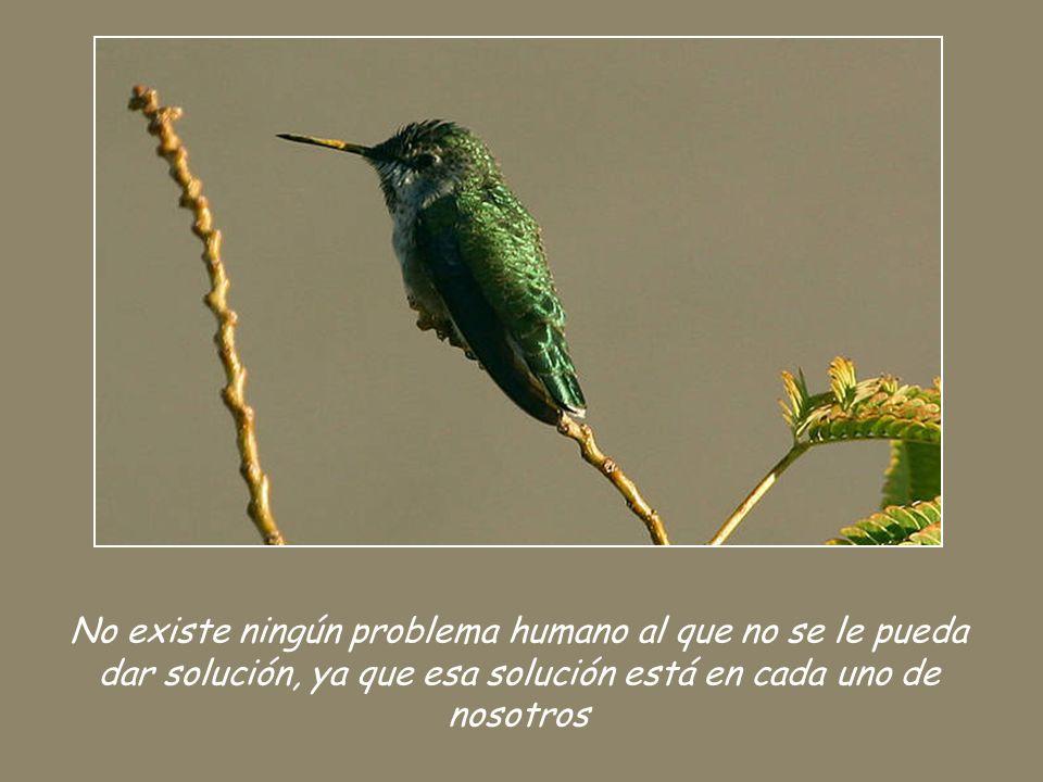 No existe ningún problema humano al que no se le pueda dar solución, ya que esa solución está en cada uno de nosotros