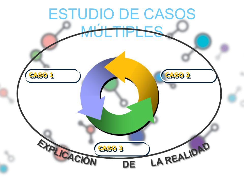 ESTUDIO DE CASOS MÚLTIPLES