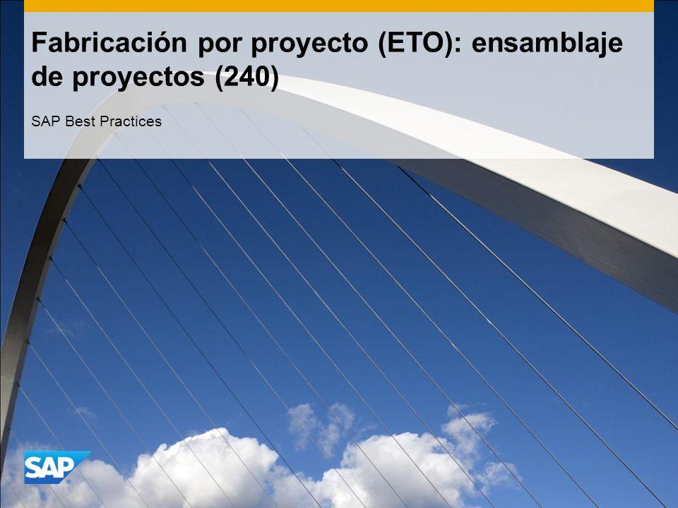 Fabricación por proyecto (ETO): ensamblaje de proyectos (240)