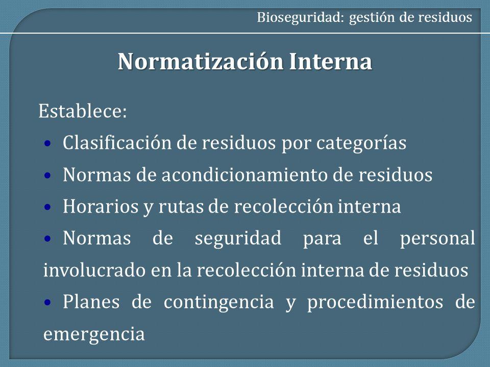 Normatización Interna