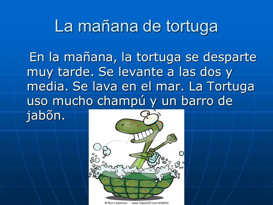 La mañana de tortuga