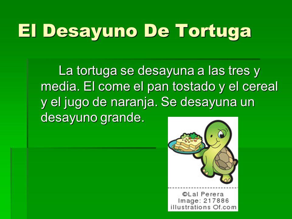 El Desayuno De Tortuga