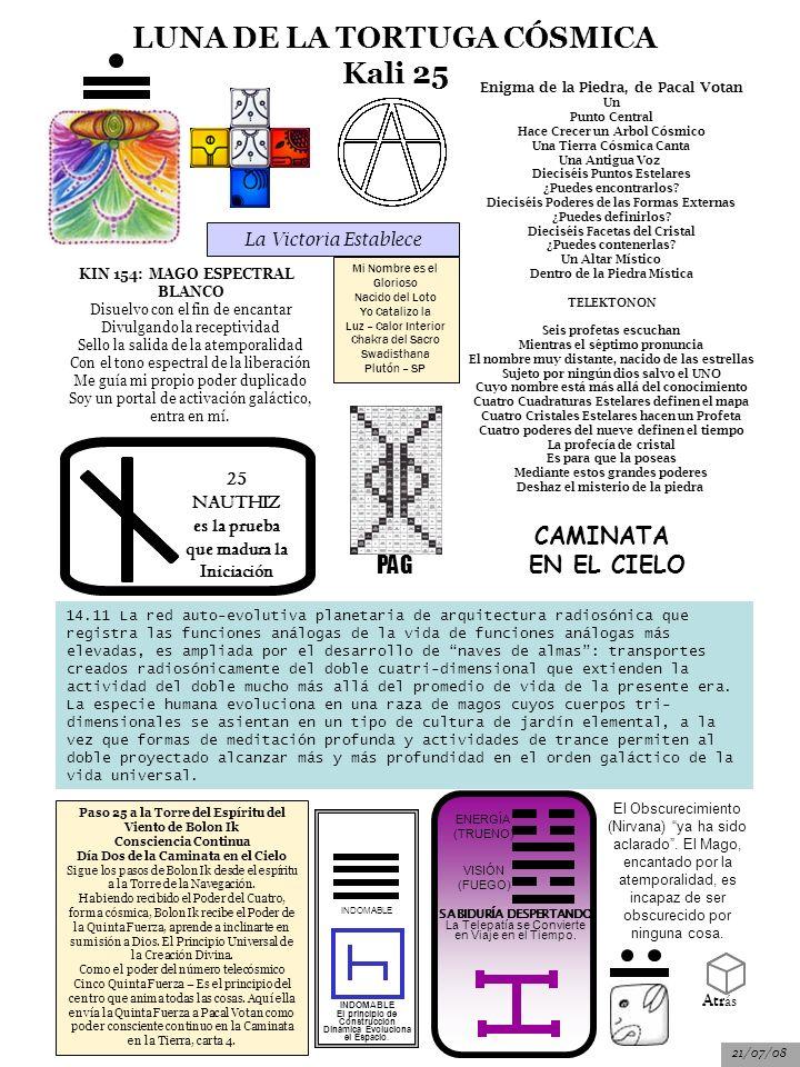 LUNA DE LA TORTUGA CÓSMICA Kali 25