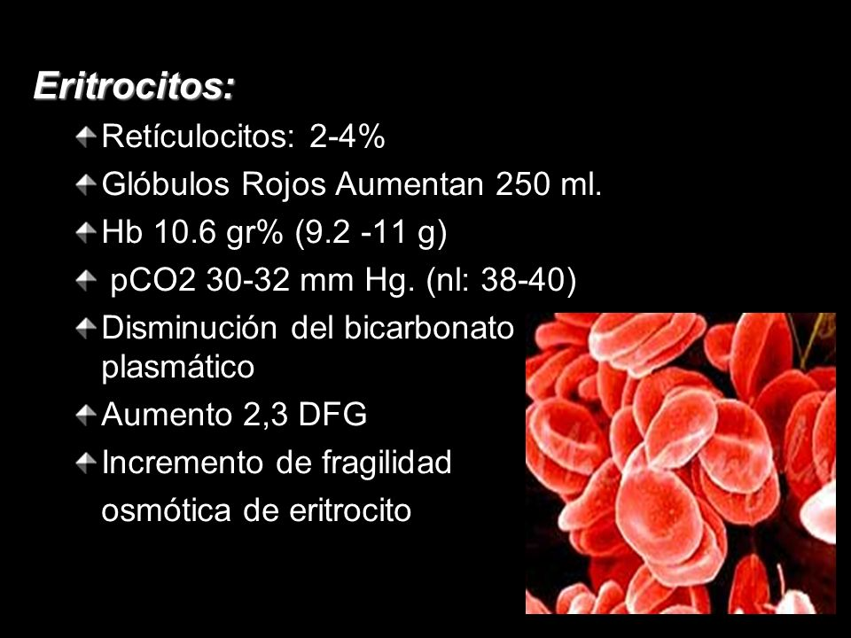 Eritrocitos: Retículocitos: 2-4% Glóbulos Rojos Aumentan 250 ml.