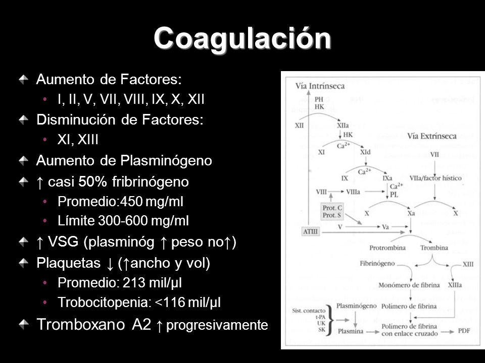 Coagulación Tromboxano A2 ↑ progresivamente Aumento de Factores: