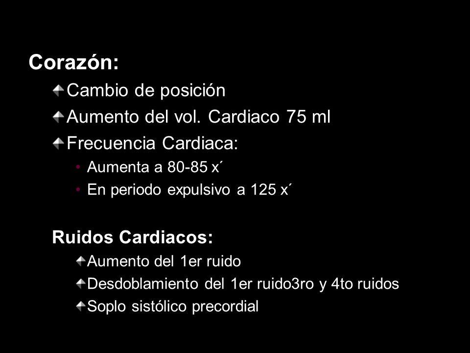 Corazón: Cambio de posición Aumento del vol. Cardiaco 75 ml