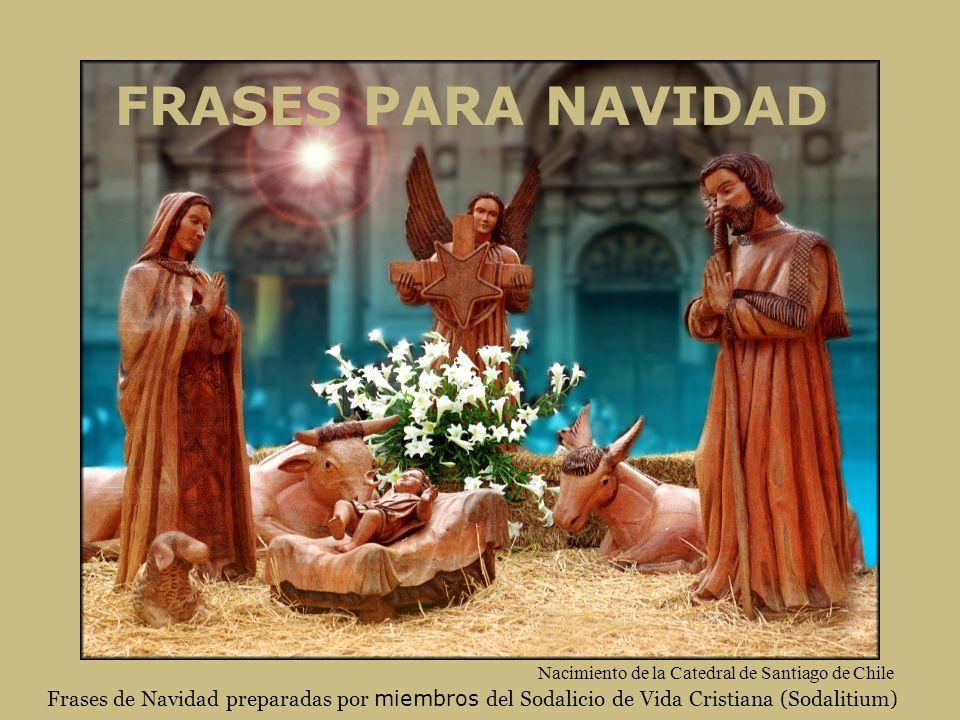 FRASES PARA NAVIDAD Nacimiento de la Catedral de Santiago de Chile.