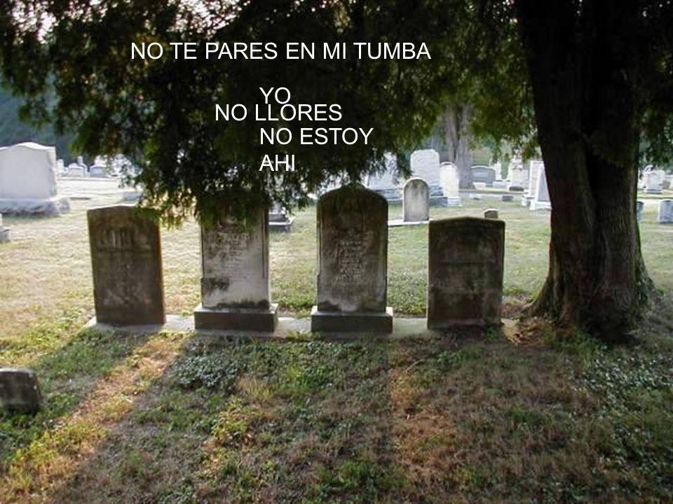 NO TE PARES EN MI TUMBA YO NO ESTOY AHI NO LLORES