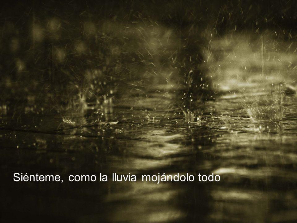 Siénteme, como la lluvia mojándolo todo