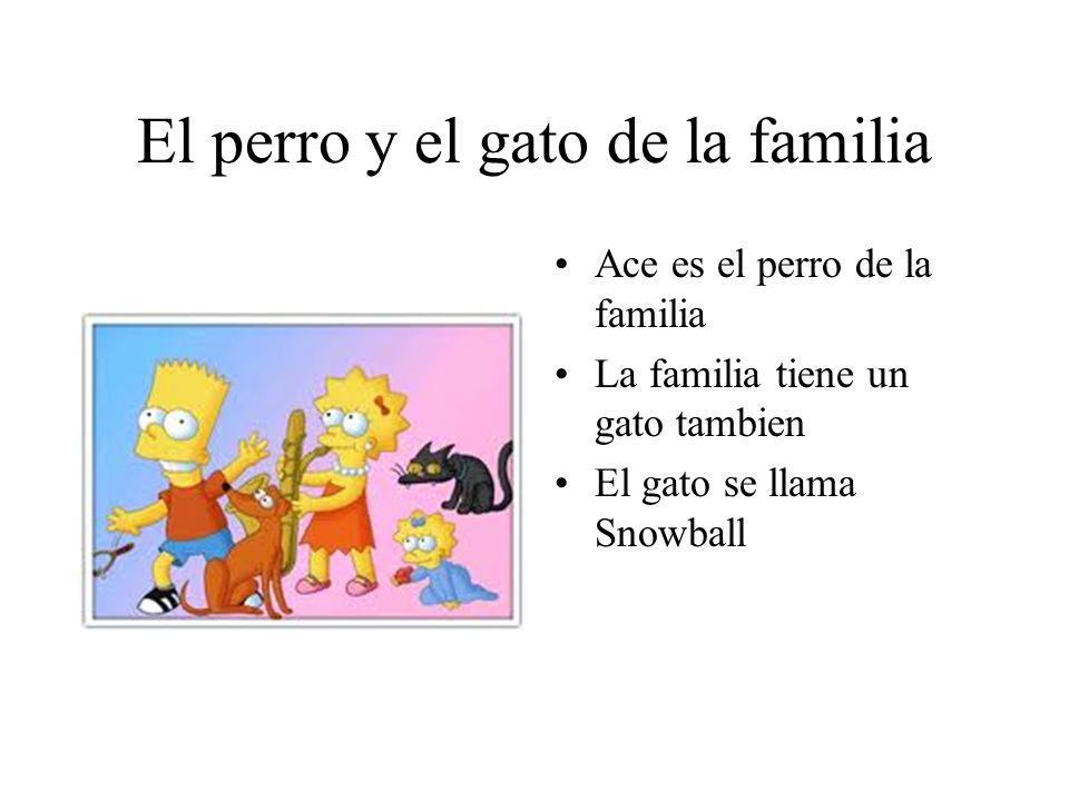 El perro y el gato de la familia