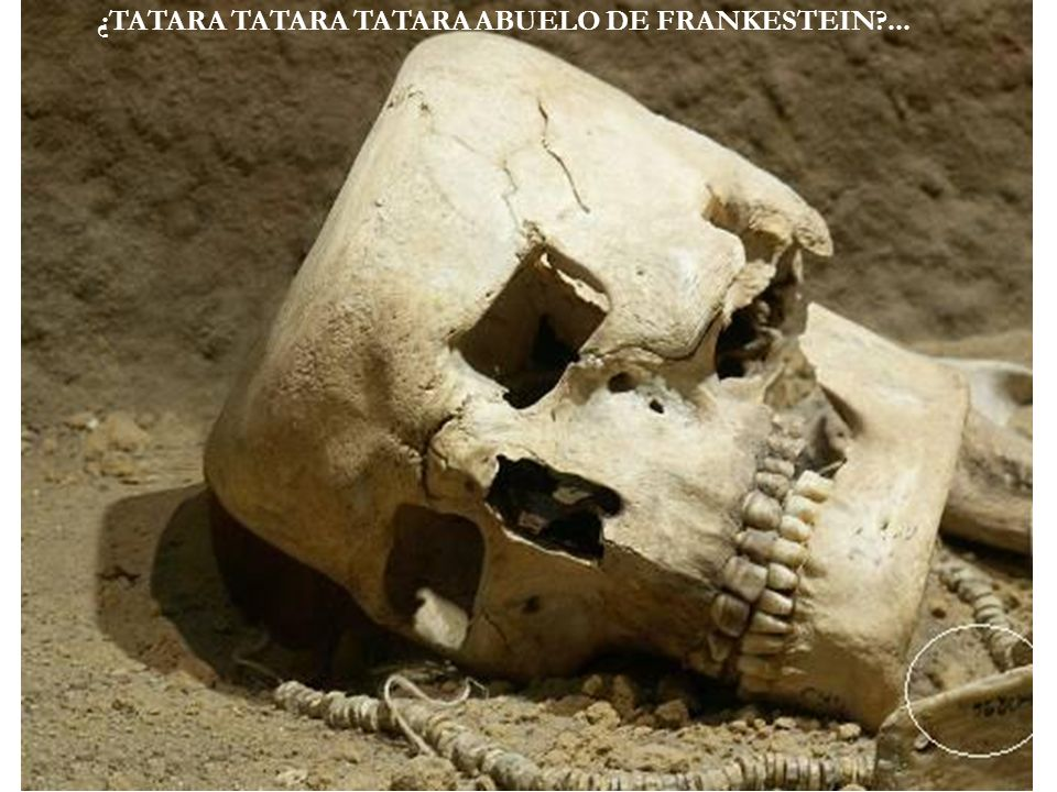 ¿TATARA TATARA TATARA ABUELO DE FRANKESTEIN ...