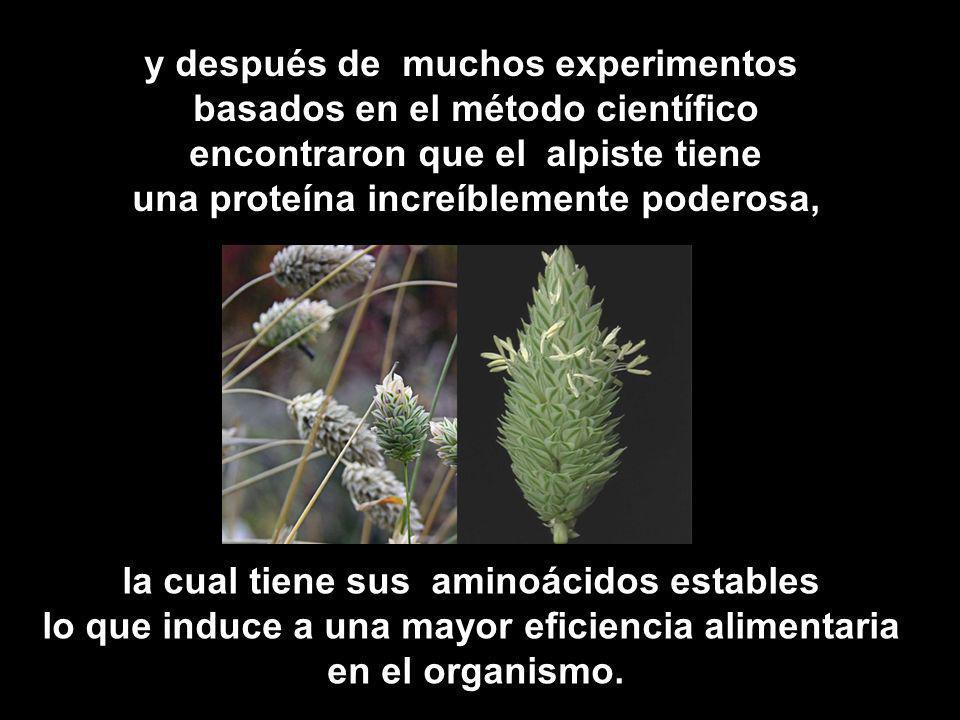 y después de muchos experimentos basados en el método científico