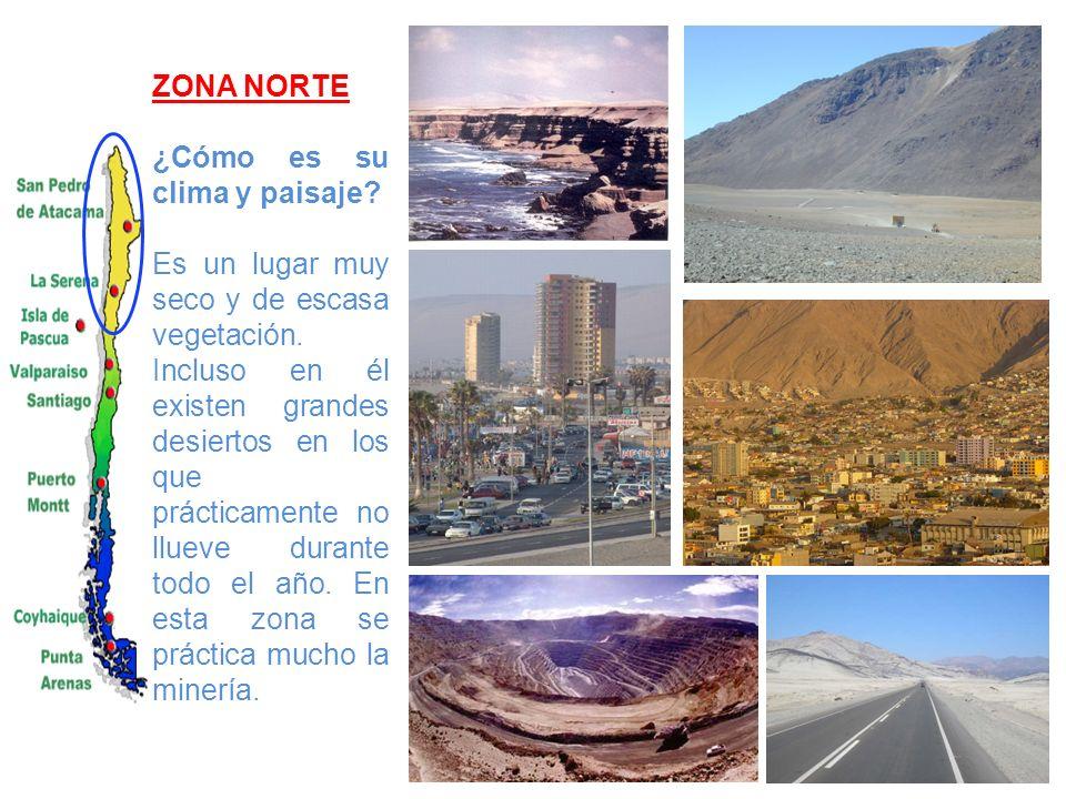 ZONA NORTE ¿Cómo es su clima y paisaje