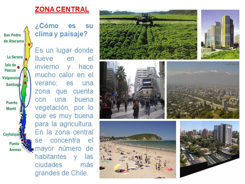 ZONA CENTRAL ¿Cómo es su clima y paisaje