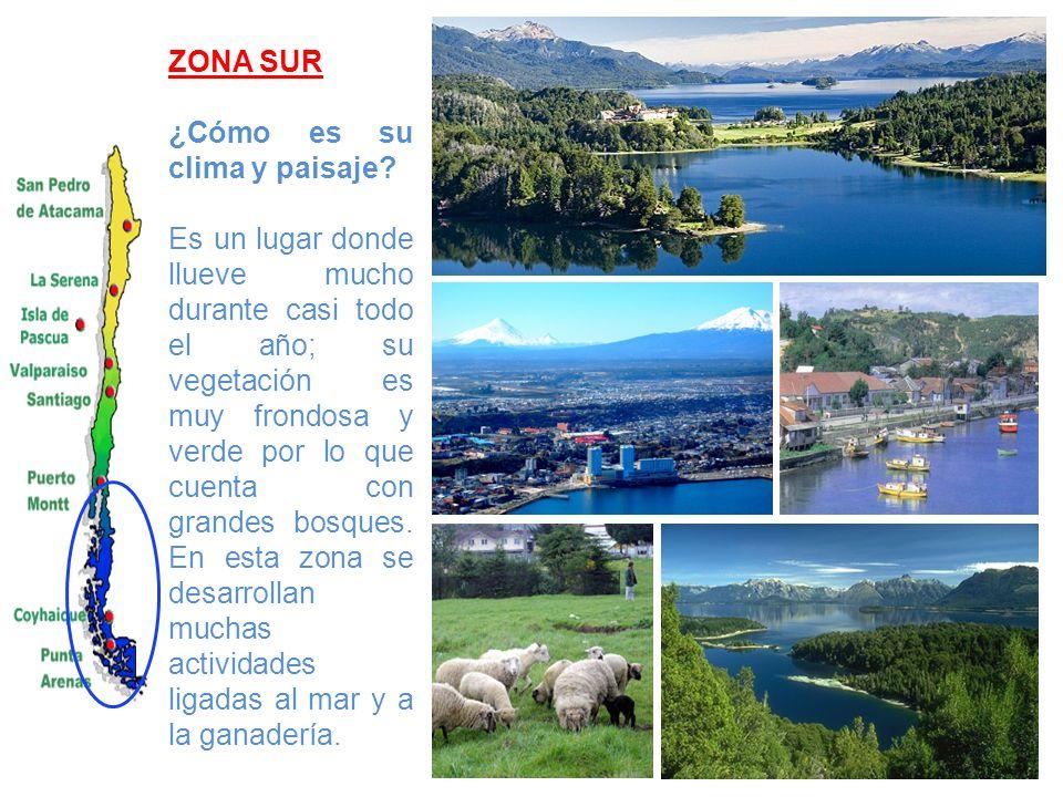 ZONA SUR ¿Cómo es su clima y paisaje