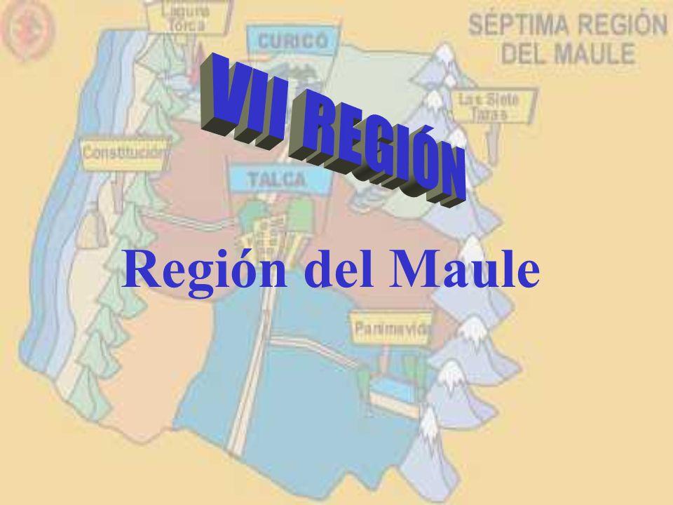 VII REGIÓN Región del Maule