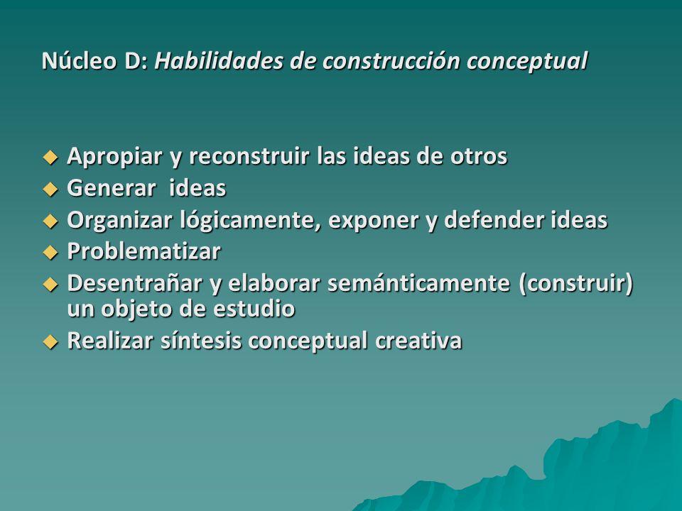Núcleo D: Habilidades de construcción conceptual